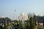 taj mahal and nature