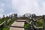 Hallasan Path