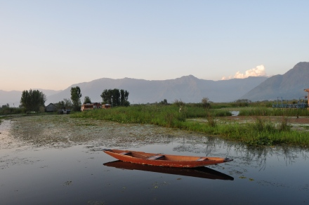 Boat on Dal Lake
