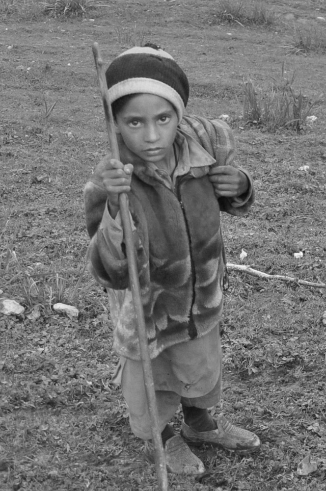 Indian shepherd boy